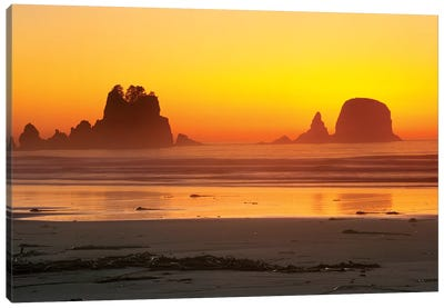 Vibrant Twilight, Point Of Arches, Shi Shi Beach, Olympic National Park, Washington, USA Canvas Art Print
