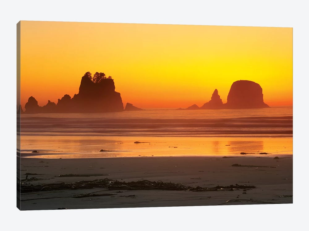Vibrant Twilight, Point Of Arches, Shi Shi Beach, Olympic National Park, Washington, USA by Rob Tilley 1-piece Canvas Art