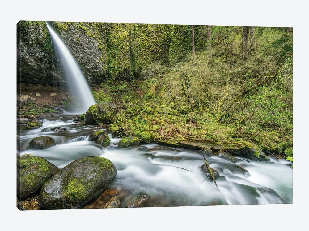 USA, Oregon, Columbia River Gorge, Ponytail Falls by Rob Tilley 1-piece Canvas Art Print