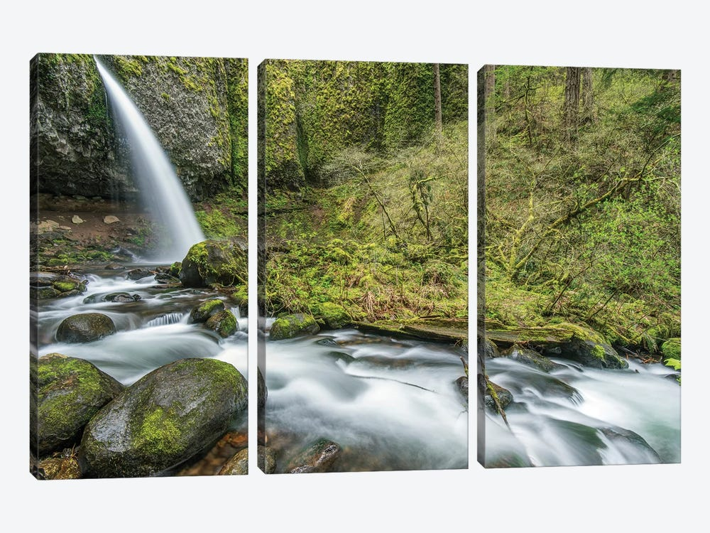 USA, Oregon, Columbia River Gorge, Ponytail Falls by Rob Tilley 3-piece Canvas Print