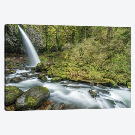 USA, Oregon, Columbia River Gorge, Ponytail Falls Canvas Print #RTI20} by Rob Tilley Canvas Art