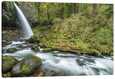 USA, Oregon, Columbia River Gorge, Ponytail Falls Canvas Art Print
