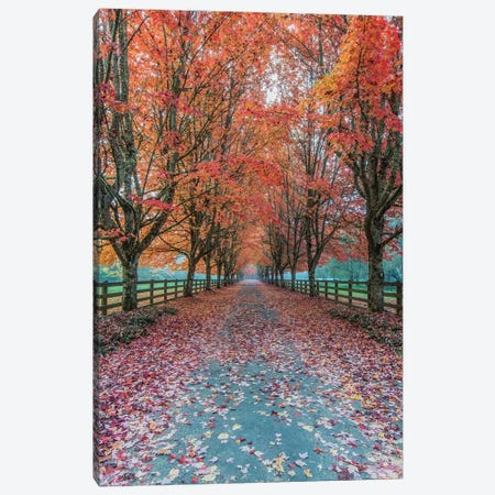 USA, Washington State, Snoqualmie. Autumn country lane. 3-Piece Canvas #RTI39} by Rob Tilley Art Print