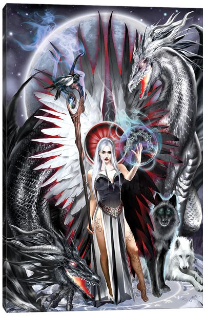 Gemini Canvas Art Print