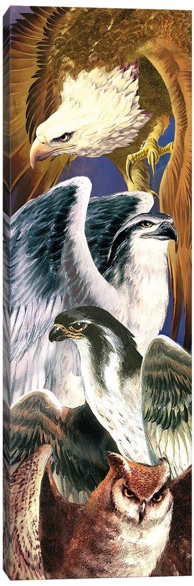 4 Birds Of Prey Canvas Art Print