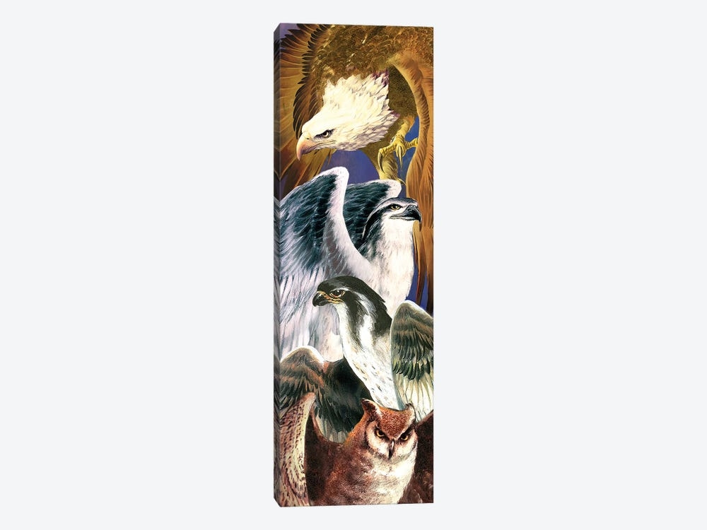 4 Birds Of Prey by Ruth Thompson 1-piece Canvas Wall Art