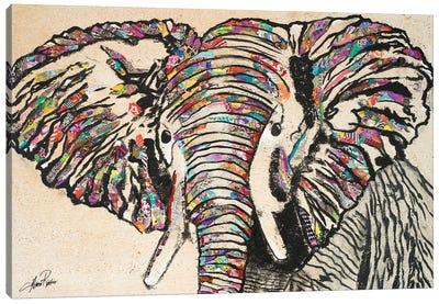 Serengeti Plains II Canvas Art Print