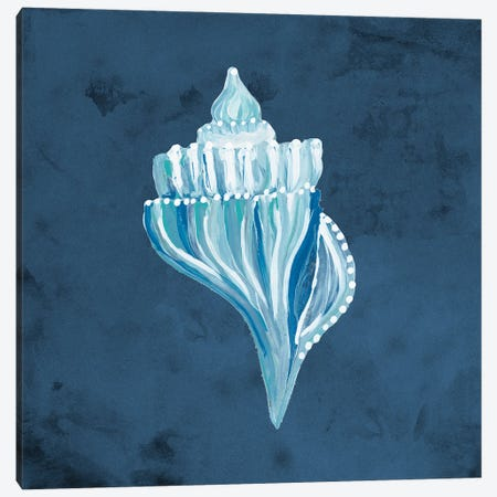 Azul Dotted Seashell on Navy I Canvas Print #RTR39} by Gina Ritter Canvas Wall Art