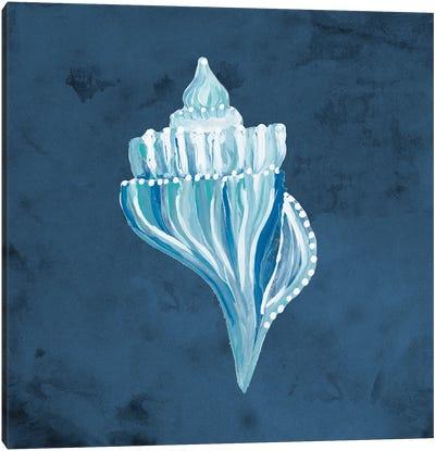 Azul Dotted Seashell on Navy I Canvas Art Print