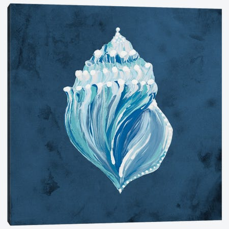 Azul Dotted Seashell on Navy II Canvas Print #RTR40} by Gina Ritter Art Print