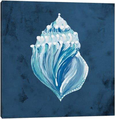 Azul Dotted Seashell on Navy II Canvas Art Print
