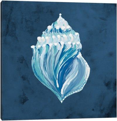 Azul Dotted Seashell on Navy II Canvas Art Print