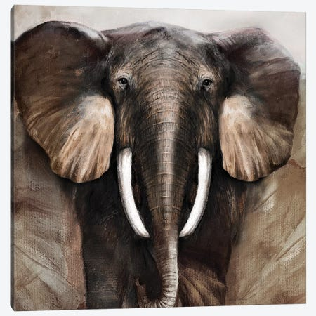 Majestic Encounter Canvas Print #RUA111} by Ruane Manning Canvas Wall Art