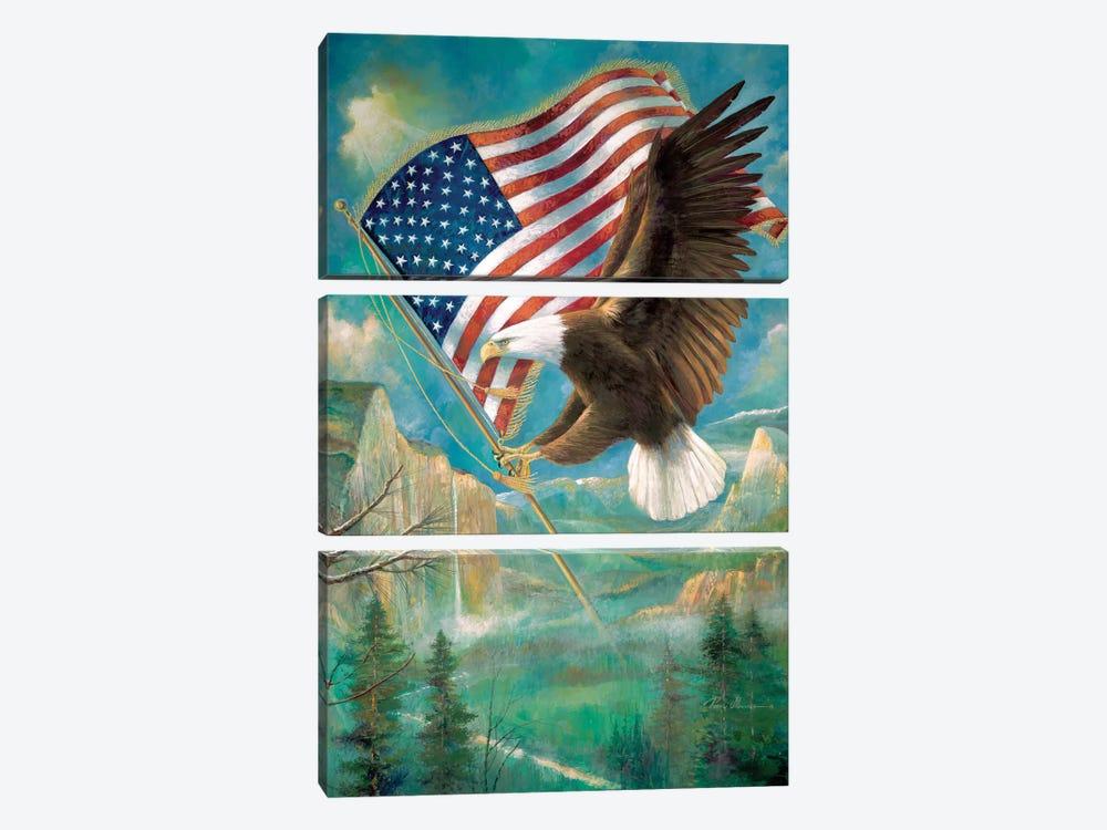 Pledge Of Allegiance by Ruane Manning 3-piece Art Print