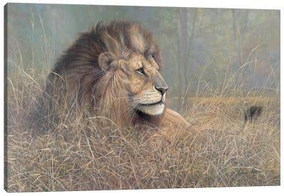 Majestic Beauty Canvas Art Print