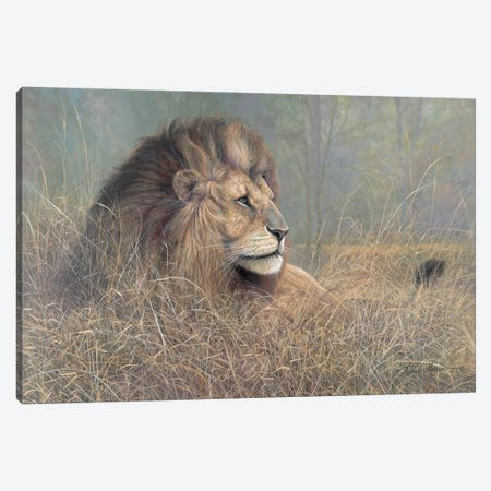 Majestic Beauty 3-Piece Canvas #RUA179} by Ruane Manning Canvas Wall Art