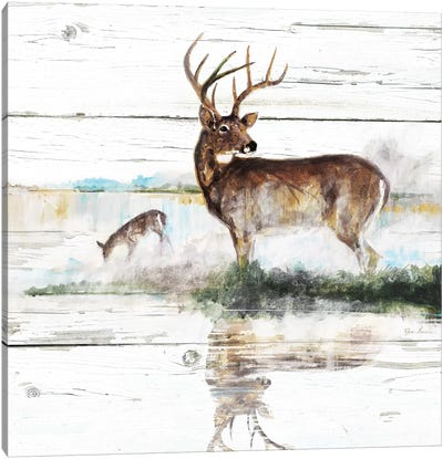 Rustic Misty Deer Canvas Art Print