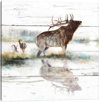 Rustic Misty Elk Canvas Art Print