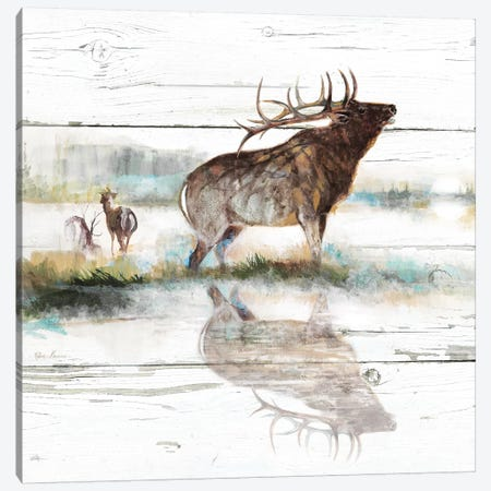Rustic Misty Elk Canvas Print #RUA192} by Ruane Manning Canvas Artwork