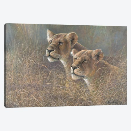 Sisters of the Serengeti Canvas Print #RUA194} by Ruane Manning Canvas Art Print
