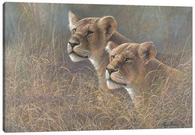 Sisters of the Serengeti Canvas Art Print