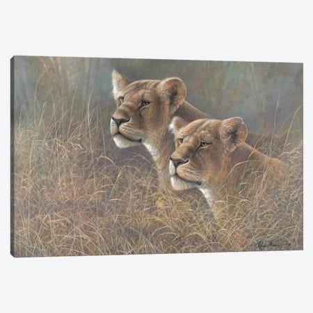 Sisters of the Serengeti Canvas Print #RUA194} by Ruane Manning Canvas Art Print