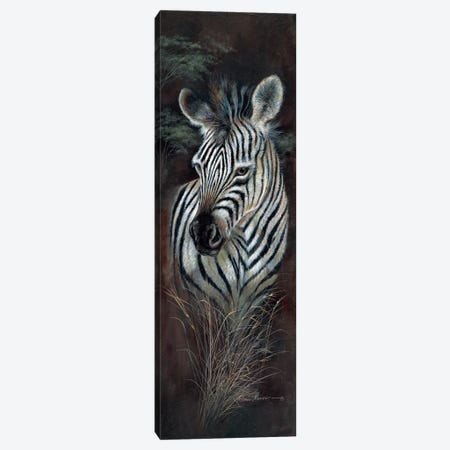 Striped Innocence Canvas Print #RUA195} by Ruane Manning Art Print