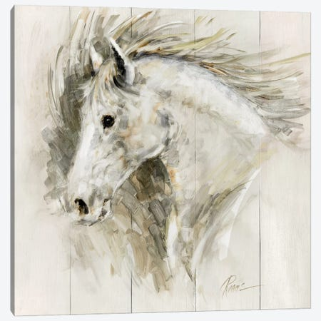White Thunder Canvas Print #RUA206} by Ruane Manning Art Print
