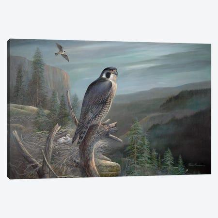 Falcon Canvas Print #RUA252} by Ruane Manning Canvas Art Print