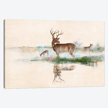 Misty Deer Canvas Print #RUA264} by Ruane Manning Canvas Print