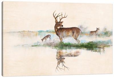 Misty Deer Canvas Art Print