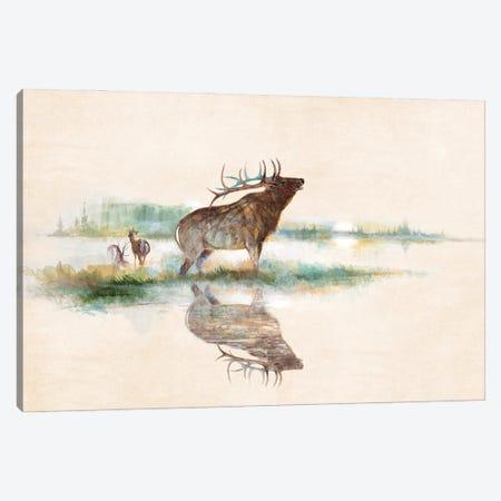 Misty Elk Canvas Print #RUA265} by Ruane Manning Canvas Print