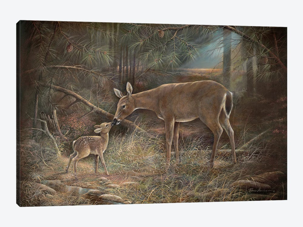 Tender Moments by Ruane Manning 1-piece Canvas Print