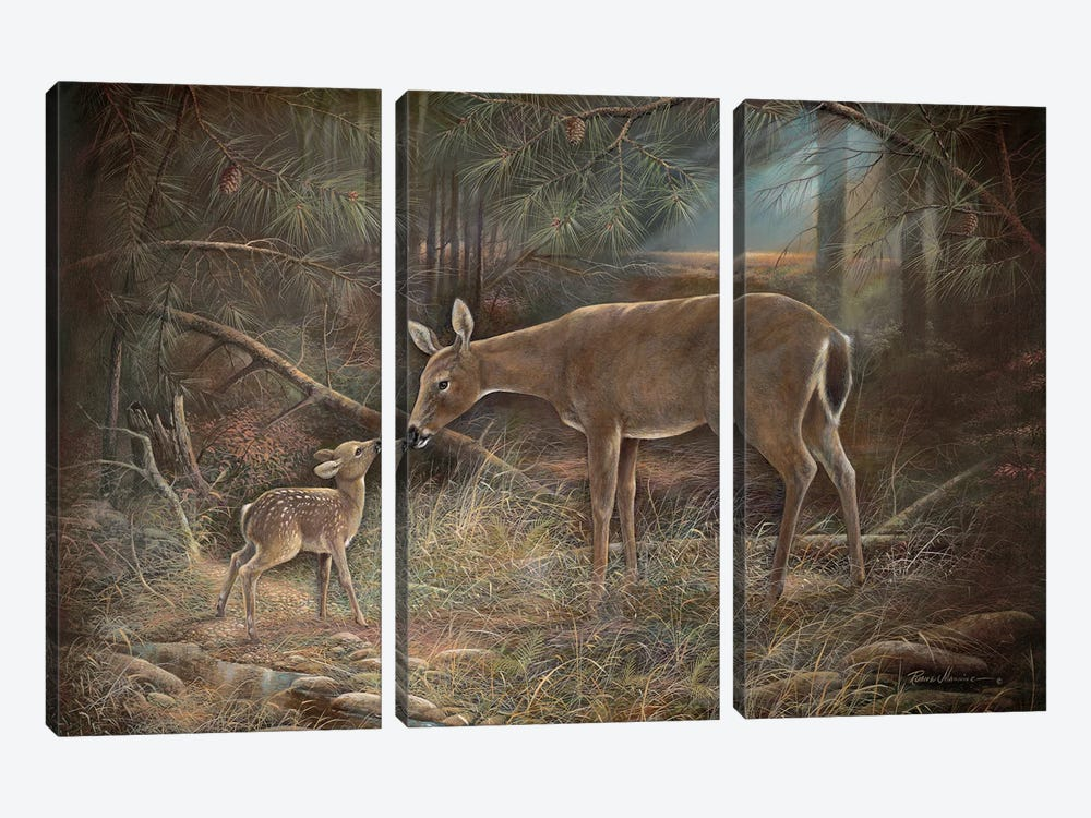 Tender Moments by Ruane Manning 3-piece Art Print