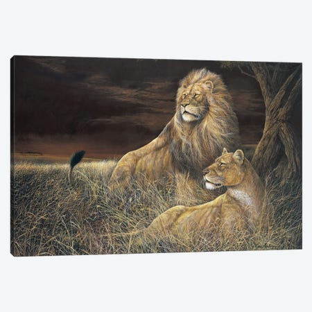 Winds in the Serengeti Canvas Print #RUA304} by Ruane Manning Canvas Wall Art