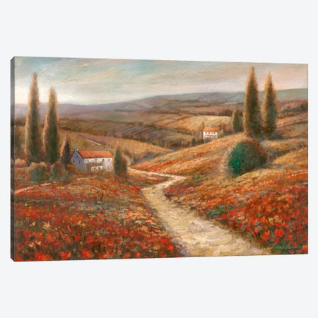 Fields Of Color Canvas Print #RUA32} by Ruane Manning Canvas Art