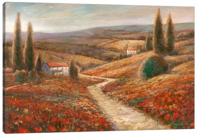 Fields Of Color Canvas Art Print