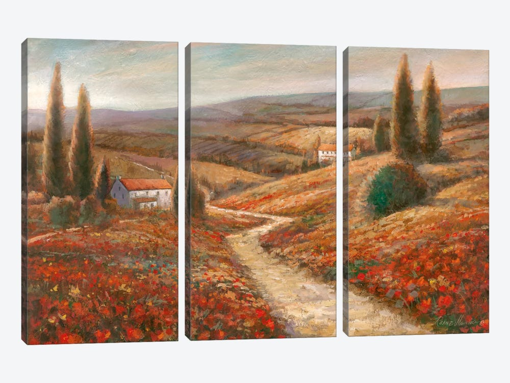 fields of color 3 piece canvas art print - Fields Of Color