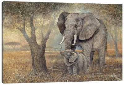 Gentle Touch Canvas Art Print