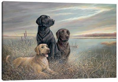 All Grown Up Canvas Art Print