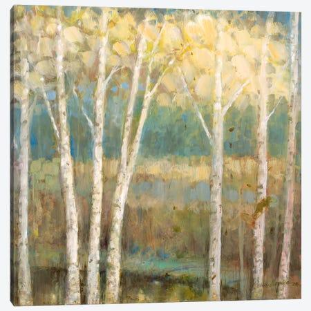 Nature's Palette II Canvas Print #RUA61} by Ruane Manning Canvas Print