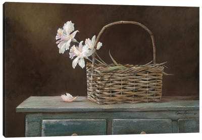 Orchid Basket Canvas Art Print