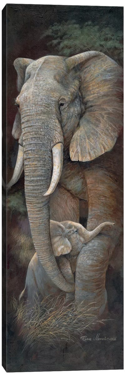 Protective Care Canvas Art Print
