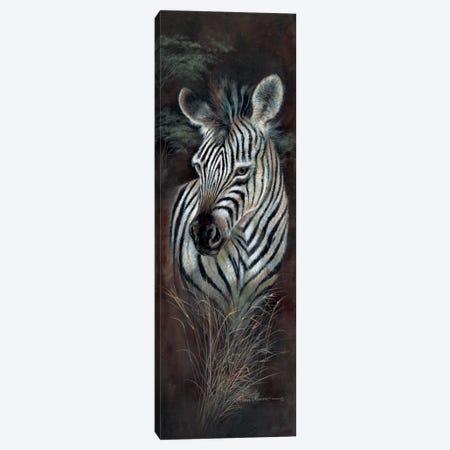 Striped Innocence Canvas Print #RUA83} by Ruane Manning Art Print