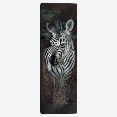 Striped Innocence Canvas Print #RUA83} by Ruane Manning Art Print