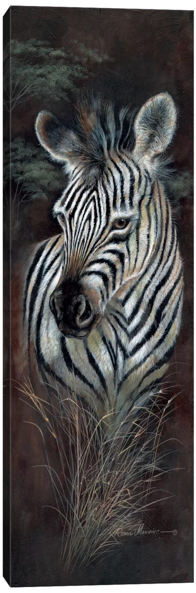 Striped Innocence Canvas Art Print