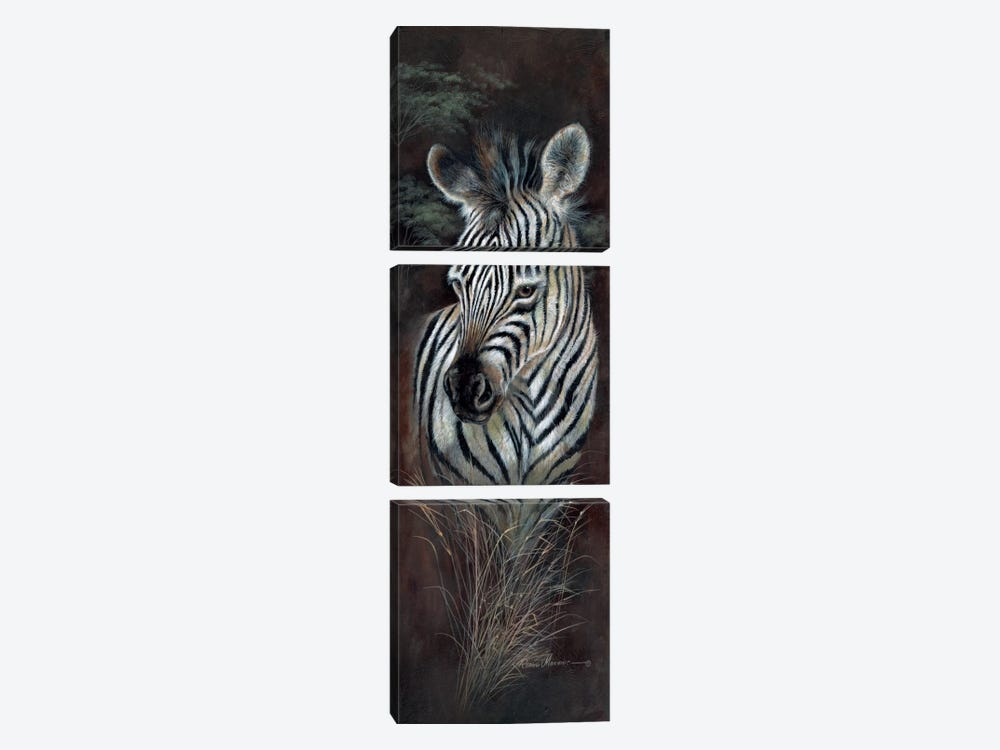Striped Innocence by Ruane Manning 3-piece Canvas Print