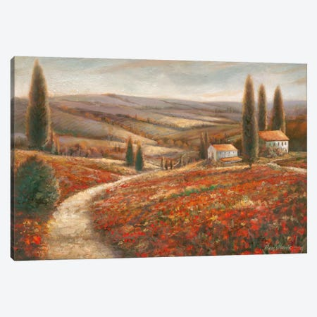 Tuscan Palette 3-Piece Canvas #RUA92} by Ruane Manning Canvas Artwork