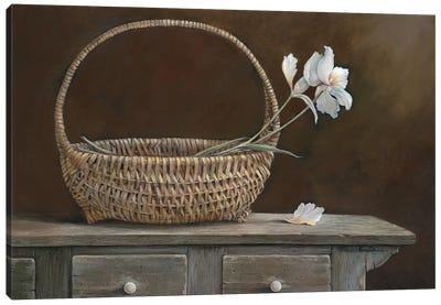 Wicker & Orchids Canvas Art Print