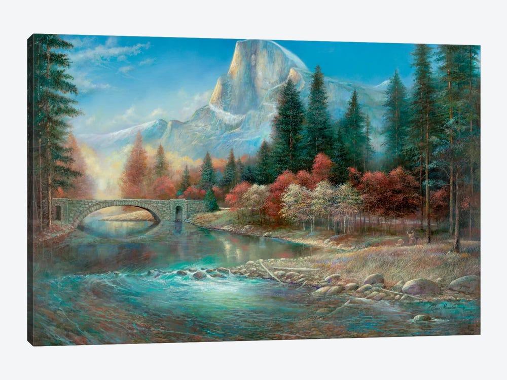 Yosemite by Ruane Manning 1-piece Canvas Art